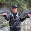 フグの群れの中で56cmをキャッチ!/御荘湾 アマゾネス横(愛媛県愛南町)