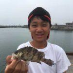 ウキ釣りで昼メバルヒット/伊予港(愛媛県伊予市)