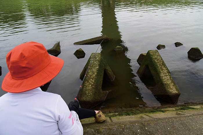 ゆる釣りテナガエビ釣る