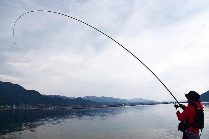 みっぴ 磯釣り