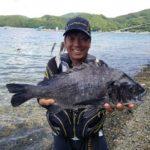 渚釣りで55cm、54cm、53cmの大型チヌ!/御荘湾(愛媛県愛南町)