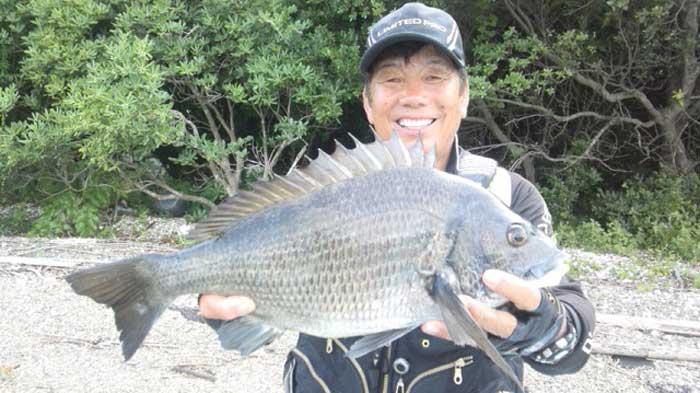 大知昭 御荘湾 55cm