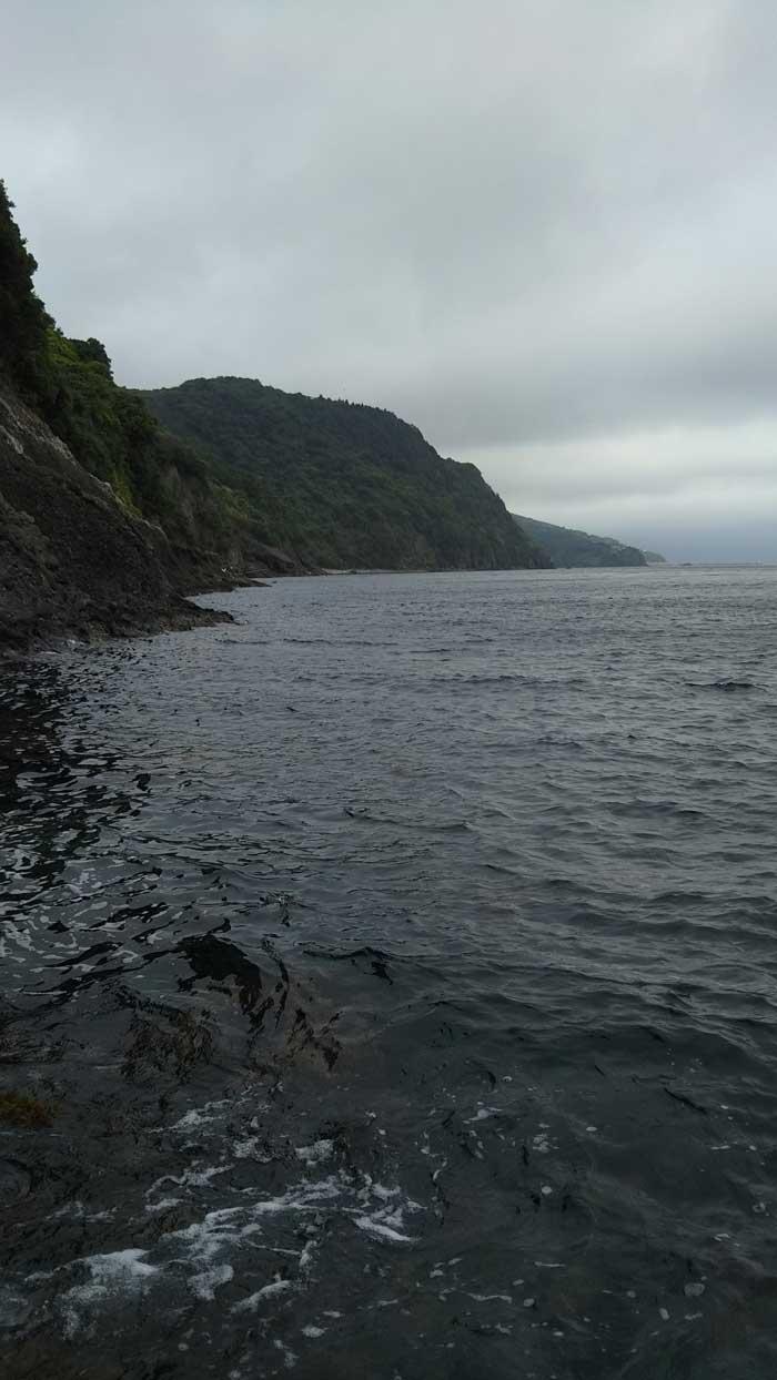 プクプク隠岐の島 ポイント