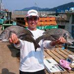 かかり釣りで54.2cmの大型チヌ/椿泊 大栄水産(徳島県阿南市)