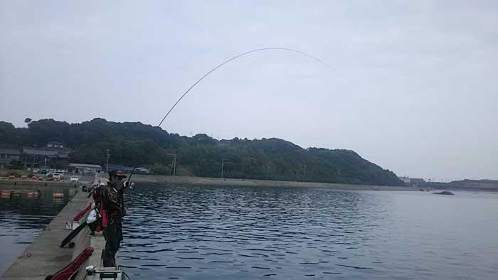 百合野 釣行 竿曲げ