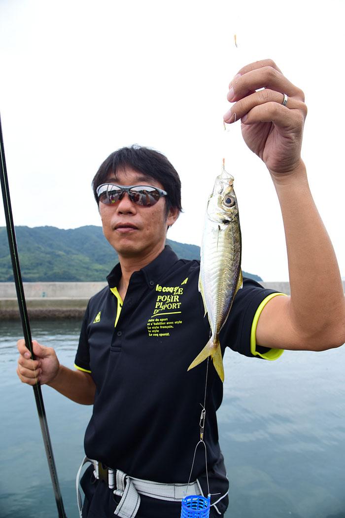 サビキ釣りで釣ったアジ