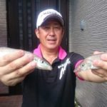 船からのキス釣りで好釣果!/小豆島周辺(香川県)