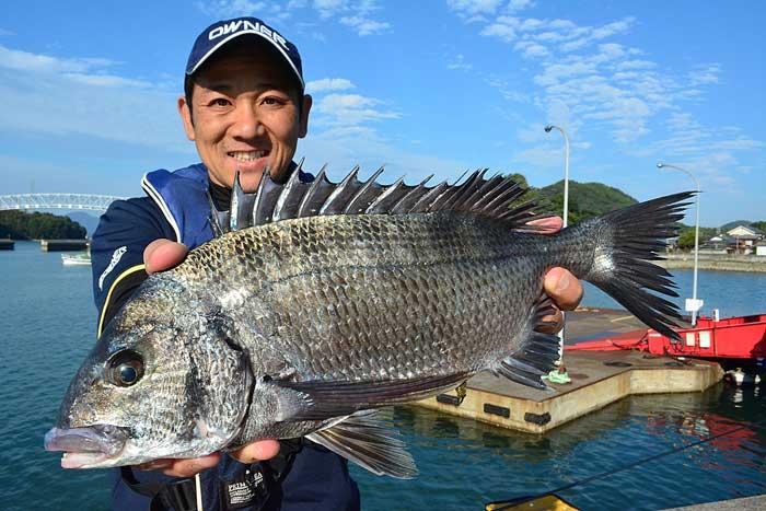 大崎上島 チヌ フカセ釣り 釣果