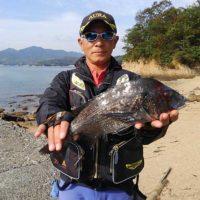広島のチヌ丸