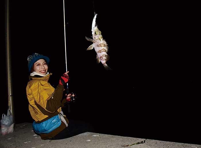 プラグ メバル ヒット 釣りぽ