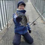 ちょい投げで良型チヌ/宇島港(福岡県豊前市)