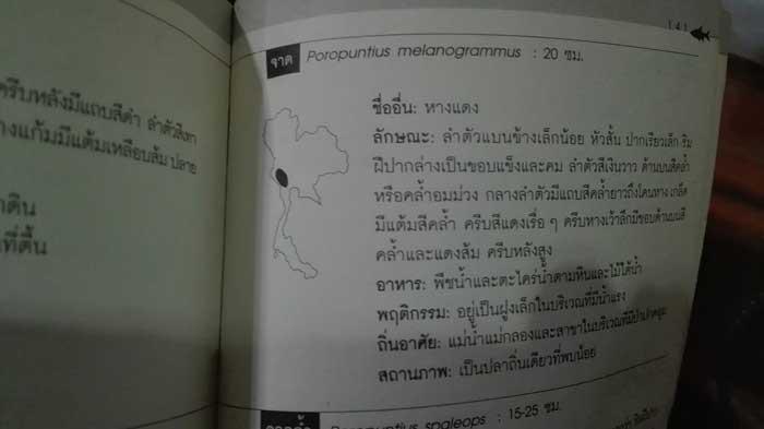タイ カンチャナブリ クウェー川 地図
