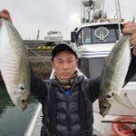 船からのアジのサビキ釣り/佐賀関沖(大分県大分市)