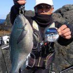 フカセ釣りで良型グレ&イサキ/由良半島 地釣1番(愛媛県愛南町)