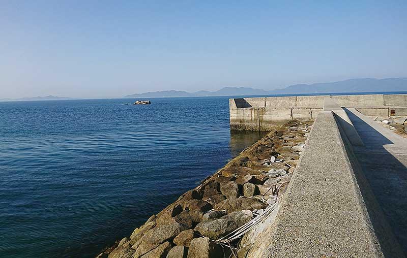 鎌野漁港 防波堤 カレイ 釣り