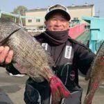 牡蠣筏 チヌのフカセ釣り/柿浦漁港沖牡蠣筏(江田島市大柿町柿浦)