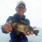 好調! 船サビキのメバル釣り/倉橋島沖(呉市)