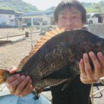 フカセ釣りでチヌ/家島諸島 院下島(姫路市)