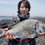 Ligare懇親釣り大会で良型チヌ/下津井 水島磯(倉敷市)