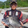 護岸&波止からチヌのフカセ釣り/上蒲刈島(呉市)