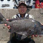フカセ釣りで良型チヌをキャッチ/日生沖の波止(岡山県)