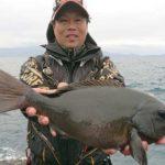 フカセ釣りで良型グレヒット/由良半島 地釣(愛南町)