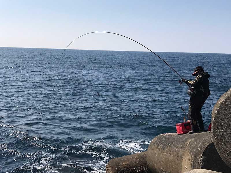 沖ノ島 グレ釣り やり取り