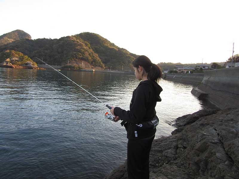 岩谷港 ライトゲーム 釣る