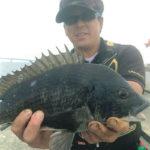 沖堤防でチヌの落とし込み/神戸ポートアイランド沖(神戸市)