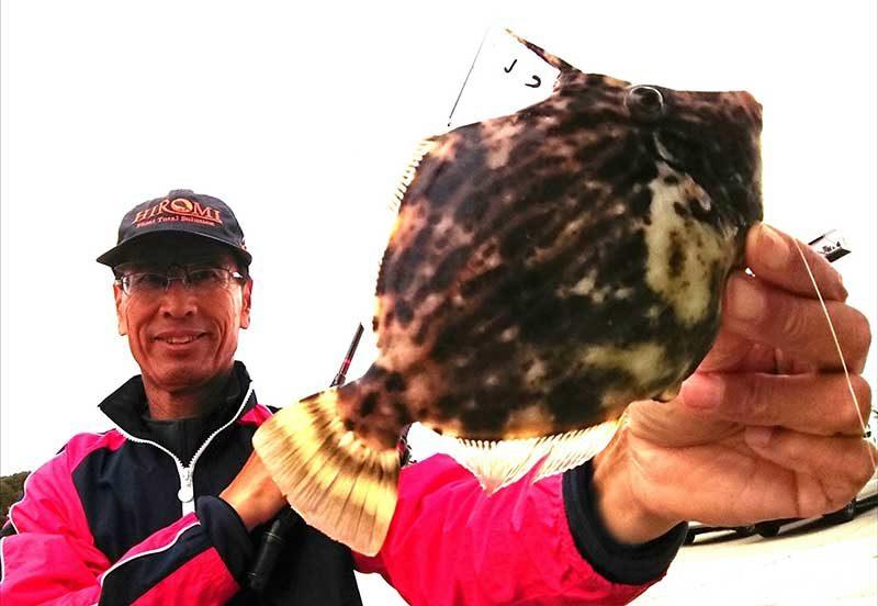 岡山で釣ったカワハギを持つ