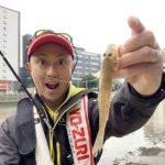 福岡市街河川でお手軽に楽しめる「ハゼクランク」/那珂川河口(福岡市)
