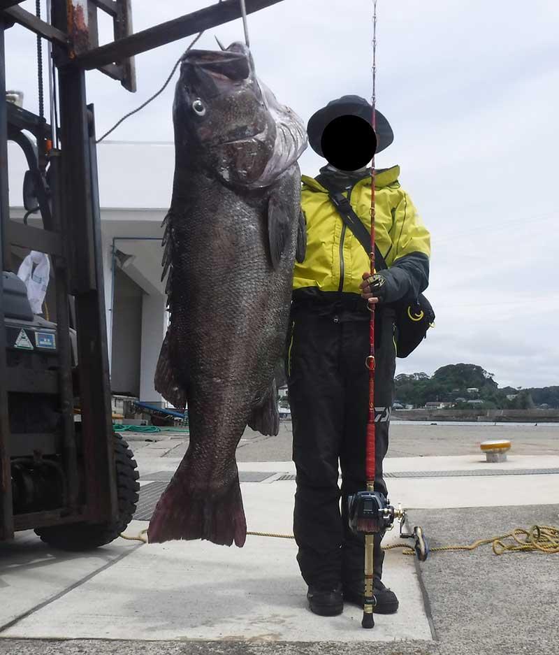 大型イシナギの釣果
